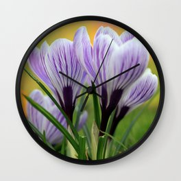 Krokuswiese  Wall Clock