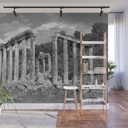 Euromos Ruins Black and White Photography Wall Mural
