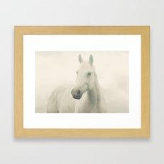 Dreamy Horse Photo Framed Art Print
