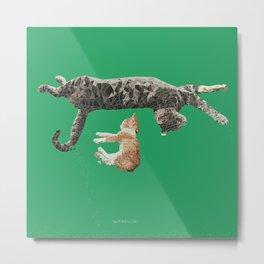 Kitten Nap Metal Print
