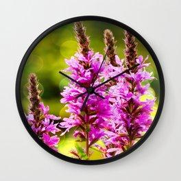 Purple Loosestrife Wall Clock