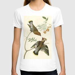 Bohemian Chatterer (Bombycilla garrulus) T-shirt