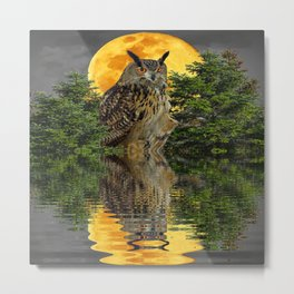 NIGHT OWL  FULL MOON WATER REFLECTION Metal Print