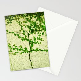 Ivy Wall Stationery Cards