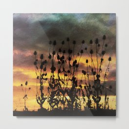 Teasel Silhouette Sunset with Watercolour Effect. Metal Print