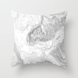 NORTH BEND WA TOPO MAP - LIGHT Throw Pillow