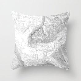 NORTH BEND WA TOPO MAP - LIGHT Throw Pillow