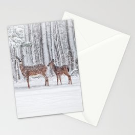 Winter Visits Stationery Cards