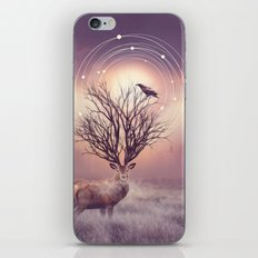 In the Stillness iPhone & iPod Skin