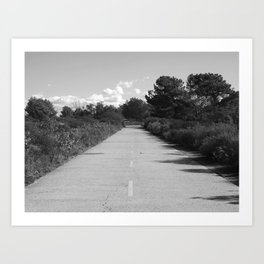 Broken Hill Trail at Torrey Pines State Reserve Art Print