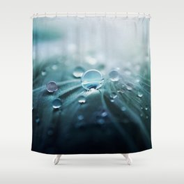 Rain drop Shower Curtain