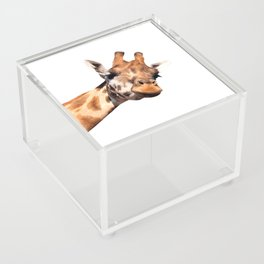 Giraffe portrait Acrylic Box