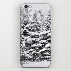 Winter Frosting iPhone & iPod Skin