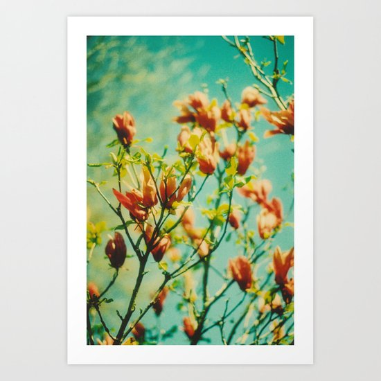 Magnolia blue. Art Print