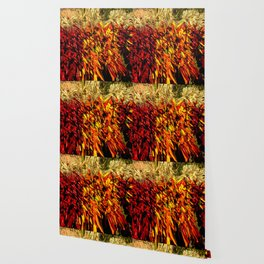 Ristras made from green, yellow, orange and red chile peppers Wallpaper