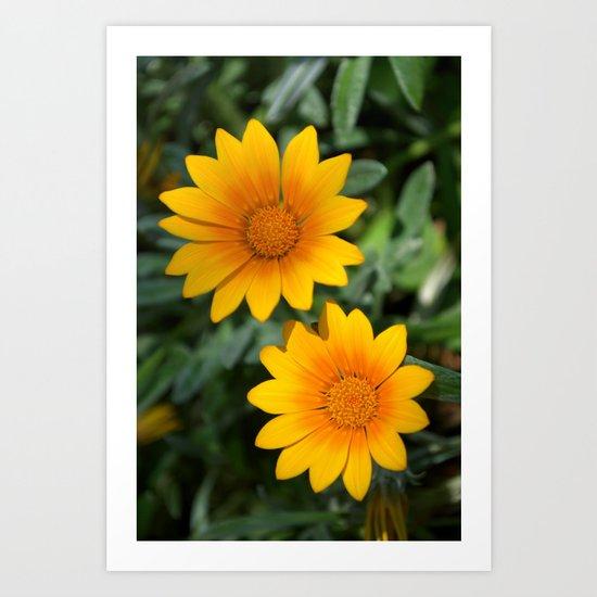 Two Yellow Flowers Art Print