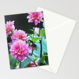Longwood Gardens Autumn Series 124 Stationery Cards