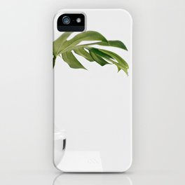 Single Monstera Leaf In Clear Glass Zen Minimalist House Plant Photo iPhone Case