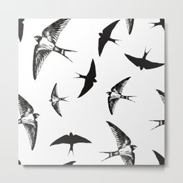 Flying birds Metal Print