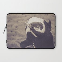 Adorable African Penguin Series 4 of 4 Laptop Sleeve