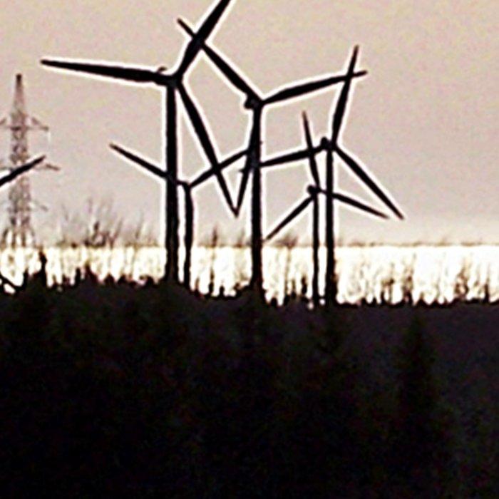 Windmill Ridge Leggings