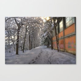 Footsteps In The Snowy Alley Canvas Print