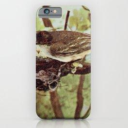 Vintage Print - Birds and Nature (1897) - Kingbird iPhone Case