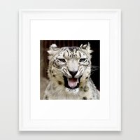 snow leopard Framed Art Prints featuring Snow Leopard by MehrFarbeimLeben