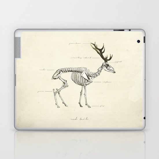 Death of the Red Tail Laptop & iPad Skin