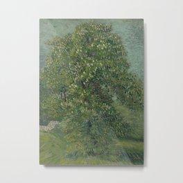Horse Chestnut Tree in Blossom Metal Print