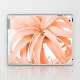 Coral Color Air Plant White Background #decor #society6 #buyart Laptop & iPad Skin