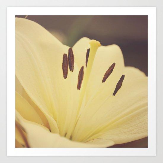 Dreamy Lily Art Print
