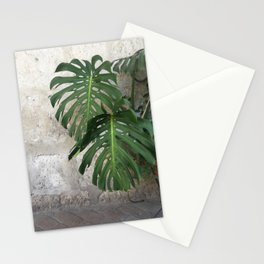 Arequipa Plants v.2 Stationery Cards