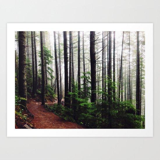 Sound of the Trees Art Print