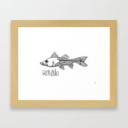 Robalo Framed Art Print