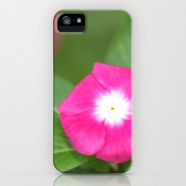 Pink Flower Close Up W/ Strong Depth iPhone Case