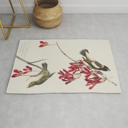 Cuviers Kinglet from Birds of America (1827) by John James Audubon etched by William Home Lizars Rug