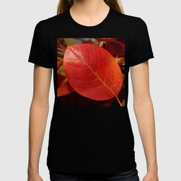 Autumn coppery red Juneberry berry leaf T-shirt