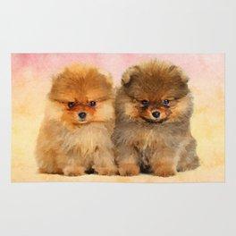 Cute Pomeranian Puppies Rug