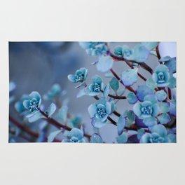 Stonecrop Succulent Rug