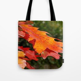 leaves in Autumn Tote Bag