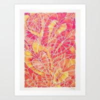 Schismatoglottis Calyptrata – Pink/Peach Palette Art Print