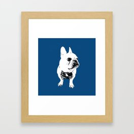 George the cutest French Bulldog Framed Art Print