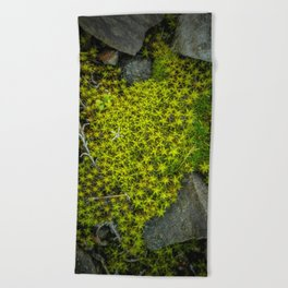 The tiny green forest Beach Towel