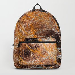 closeup dry brown grass field texture abstract background Backpack