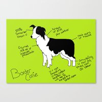 border collie Canvas Prints featuring Border Collie by Lindsay Beth