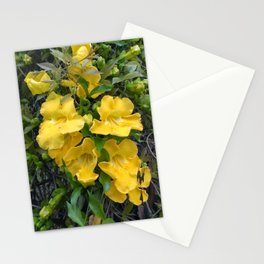 Cat's Claw Vines Stationery Cards