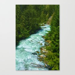 Here Be Bears - Black Bear and Wilderness River Canvas Print