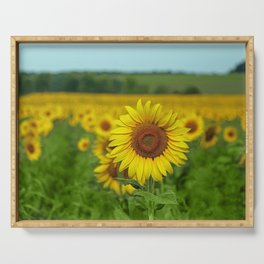 Yellow Sunflowers in Green Field Serving Tray
