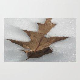 leaf in snow Rug